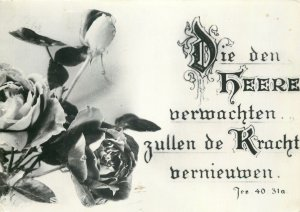 Postcard Greetings flowers rose black white
