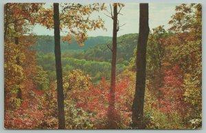 Mammoth Cave Park Kentucky~Sunset Point Overlook~Vintage Postcard