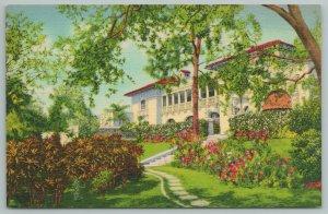 Miami Florida~Florida Estate On Coconut Grove~Vintage Postcard