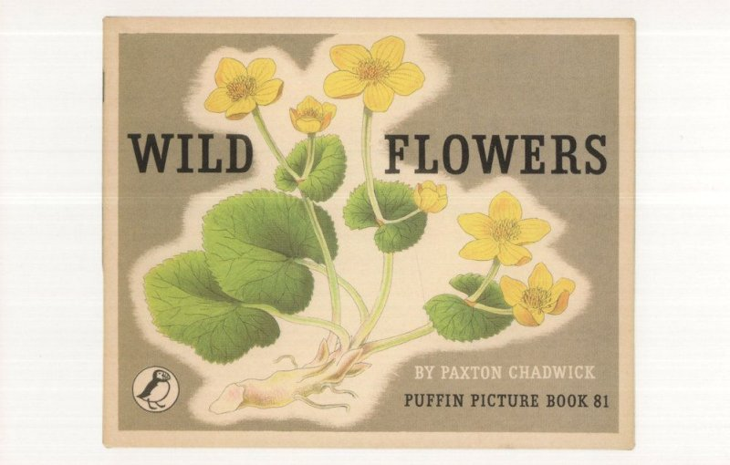 Wild Flowers Paxton Chadwick Puffin Book Postcard