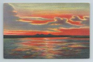 Sunset on the Rio Grande River Colorado CO Postcard