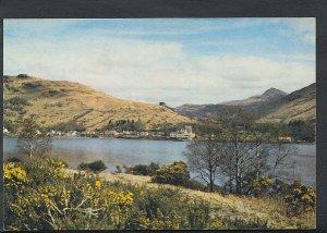 Scotland Postcard - Arrochar, Loch Long, Dunbartonshire  RR2328