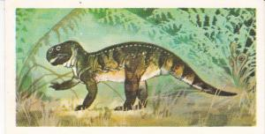 Trade Cards Brooke Bond Tea Prehistoric Animals No 24