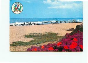 Postcard Trinidad maria Sanchez Bahai Escesa Scotish Bay Beach  # 3939A