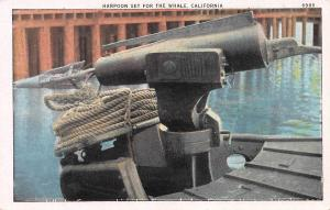 Harpoon Set For The Whale, California Postcard, Unused