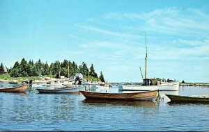 Maine Boothbay Harbor Herring Seining Dories and Workboats 1964