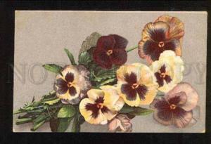 050913 Colorful PANSY Bouquet Vintage PC