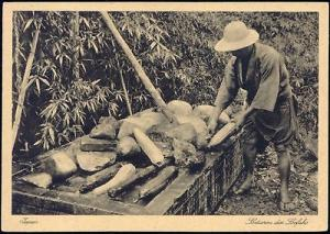 japan, Native Man Sorting Luffa Loofah Lufah Fruit 40s