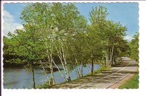 Greetings from  Wiarton, Ontario,