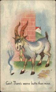 Angry Goat Smoking Cigar Butt c1910 Postcard
