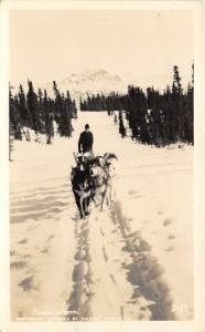 Alaska~Ranger on Patrol in Wilderness w Dog Sled Team~1940s RPPC-Postcard