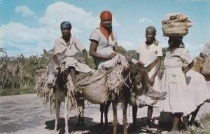 Haitian peasants on way to Port-au-Prince on donkeys, Haiti, West Indies, 40-60s