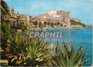 Postcard Modern Calvi Corsica Oasis of Beauty and Light Colors of France Over...