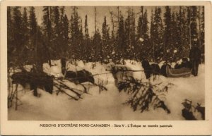 CPA AK Missions d'Extréme-Nord Canadien DOGS (728333)