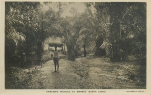 Sierra Leone carrying produce to market postcard 1921