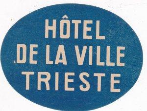 Italy Trieste Hotel De La Ville Vintage Luggage Label sk4621