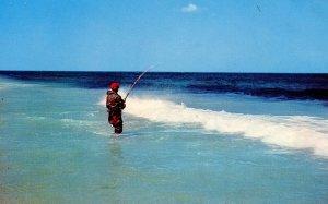 MA - Cape Cod. Fishing for Bass