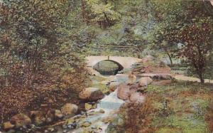 Illinois Peoria Sulphur Spring Glen Oak Park 1908