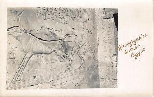 Hieroglyphies Luxor Egypt Real Photo RPPC Postcard