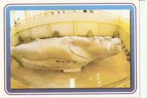 Postal 045792 : Memphis - The Colossus of Ramses II