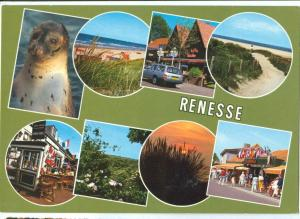 Holland, Netherlands, Renesse, 1991 used Postcard