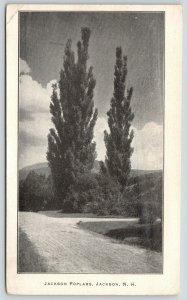 Jackson New Hampshire~Gravel Road Takes Right At Jackson Poplars~1912 Postcard