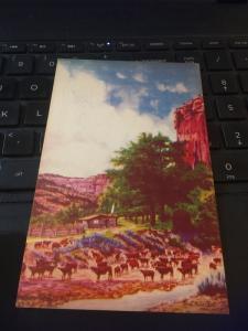 Vintage Postcard; Just a humble Cowboy's Cottage, L.H. Dude Larsen