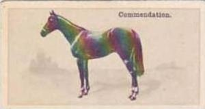 Wills Vintage Cigarette Card New Zealand Race Horses 1928 No 11 Commendation