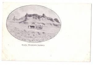 Ezra Meeker Pioneer Oregon Trail Rocky Mountain Scenery Tortoise Rock Postcard