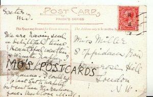Genealogy Postcard - Miller - Oppidans Row - Primrose Hill - London - Ref 8279A