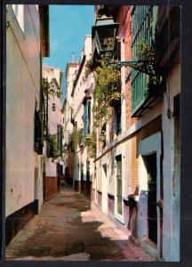 Pimienta Street,Seville,Spain BIN