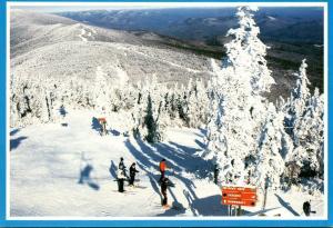 Vermont Killington Ski Resort Ski Trail