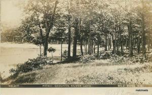 C-1910 Waushara County Picnic Grounds Silver Lake Wild Rose Wisconsin 11732