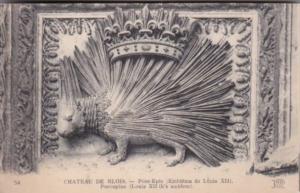France Chateau de Blois Porc-epic Embleme de Louis XII