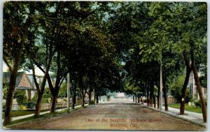 Stockton, Calif. Postcard One of the Beautiful Residence Streets Houses 1909