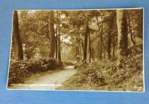 Vintage Judges Postcard No. 3044 Pwllycrochan Woods Colwyn Bay Posted 1948 (K1A)