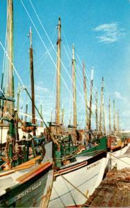 Florida Tarpon Springs Sponge Boats Docked At Sponge Exchange 1959