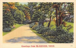 Mc Kenzie Tennessee~Road Passing Through Trees & Field~1941 Linen Postcard