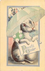 F30/ Easter Postcard Holiday Greetings c1910 Rabbit Holding Umbrella 23