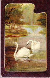 Swans Painting 1913