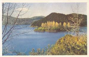 New Zealand Rotorua Lake Rotokakahi Green Lake