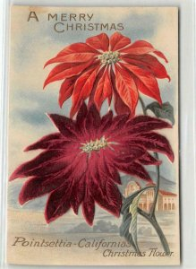 A Merry Christmas Poinsettia California Felt Flowers c1910s Vintage Postcard