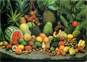 Exotic fruits of North Queensland Australia postcard