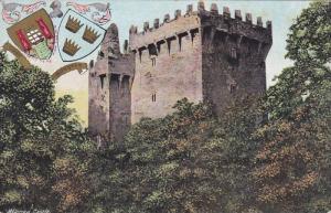 Coat Of Arms, Blarney Castle, Near Cork, Ireland, 1900-1910s
