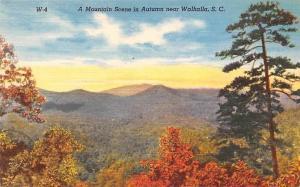 USA A Mountain Scene in Autumn near Walhalla, S. C.
