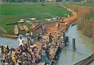 Gambia river scene postcard