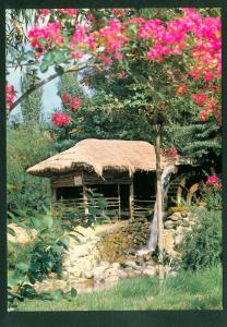 South Korean Water Mill Garden Scene Korean Vintage Postcard