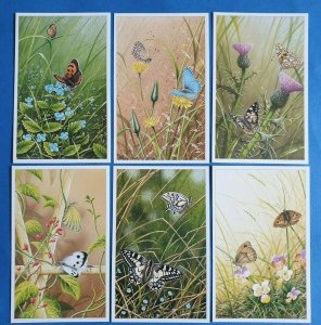 Set of 6 British Butterflies Postcards (Set 2) No.7-12 by Geoff White Ltd