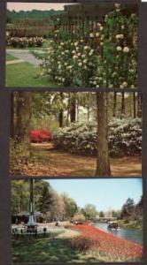 VA Lot 3 Botanical Gardens NORFOLK VIRGINIA POSTCARDS