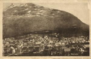 norway norge, NARVIK, Panorama (1920)